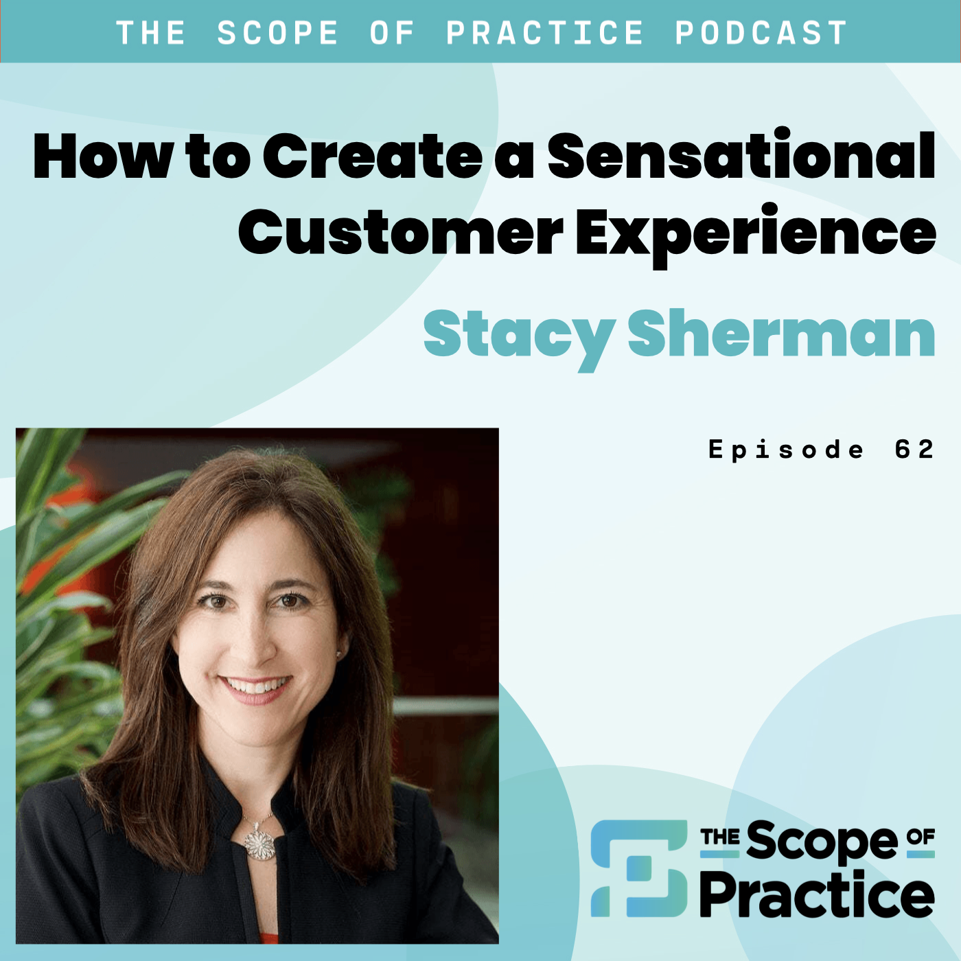 customer experience with Stacy Sherman and Doing CX Right